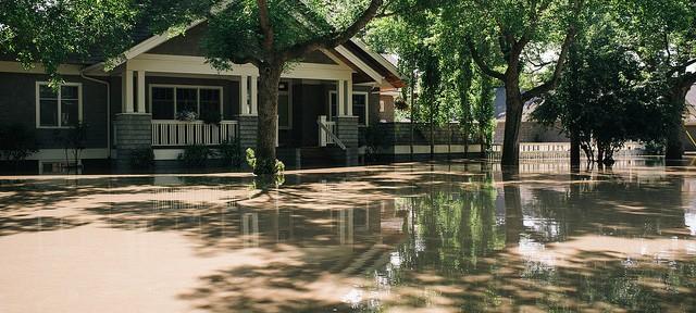 alberta flood housing