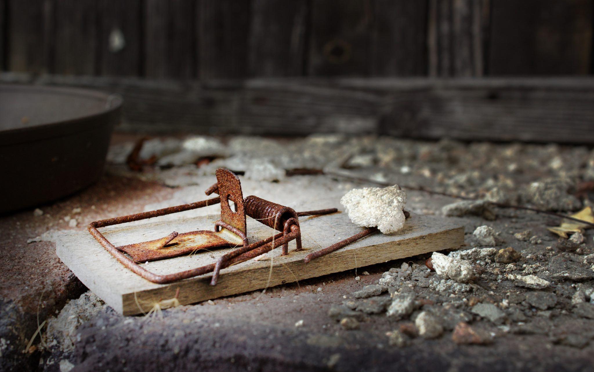 mouse-trap2