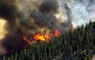 wildfire-risk