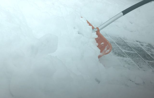 shovel snow