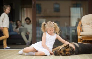 patio-deck-little-girl-dog