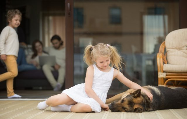patio-deck-little-girl-dog