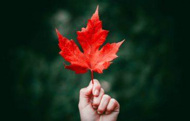 Les meilleures cartes de crédit au Canada pour 2018 et 2019
